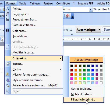 bordure et trame word 2003